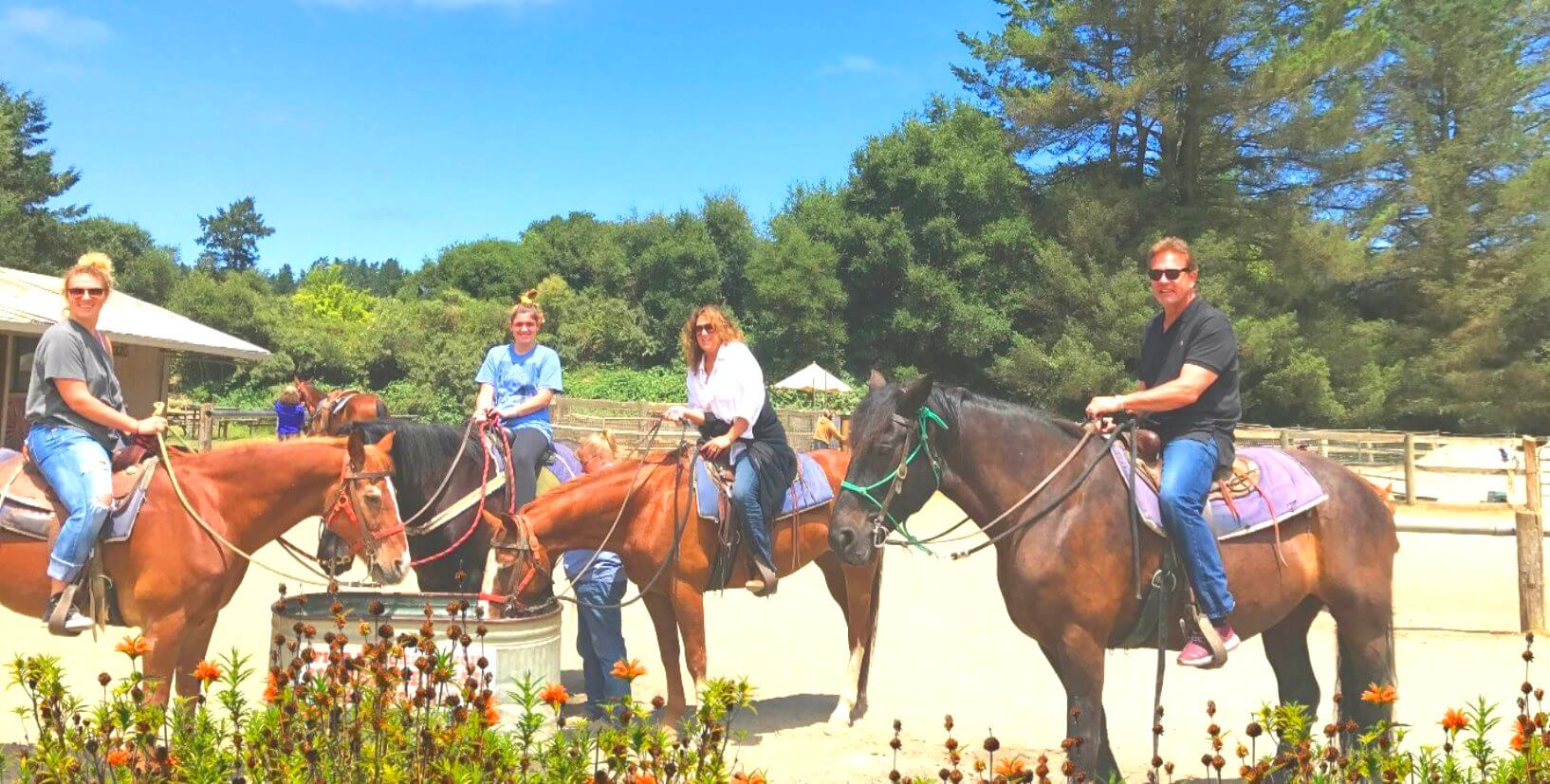 Horseback-Rides-on-the-Beach-SanFrancisco-Occean-beach-muirwoodsf