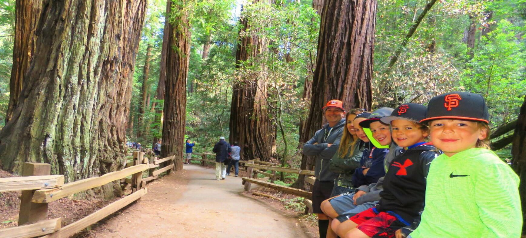 Muir-Woods-private-tours